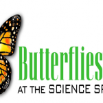 Butterflies Alive! at the Science Spectrum