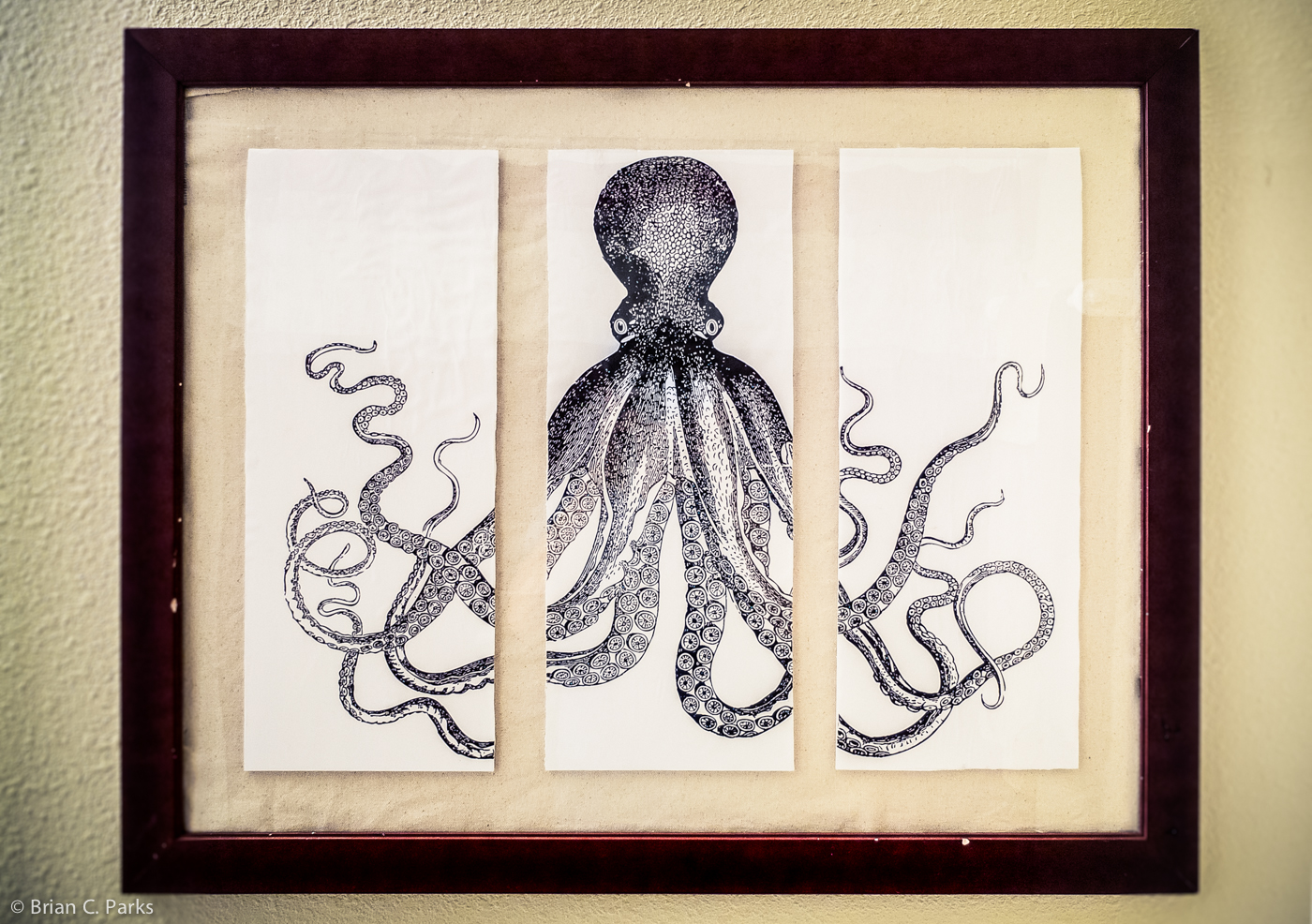 My completed Lord Bodner's octopus triptych.